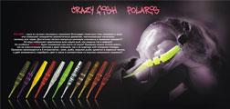 Crazy Fish Polaris